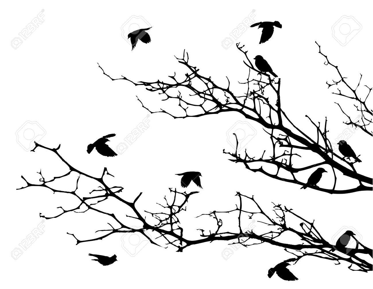 Flying Birds Silhouette Tree Tree Silhouette With Bird