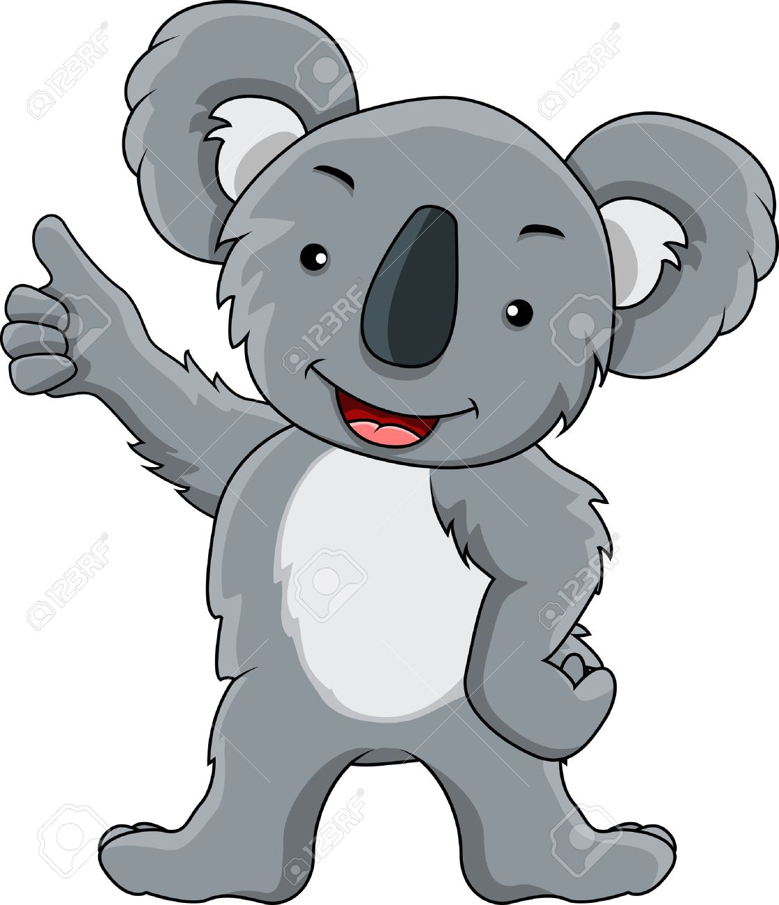 presentation of koala cartoon royalty free cliparts vectors and