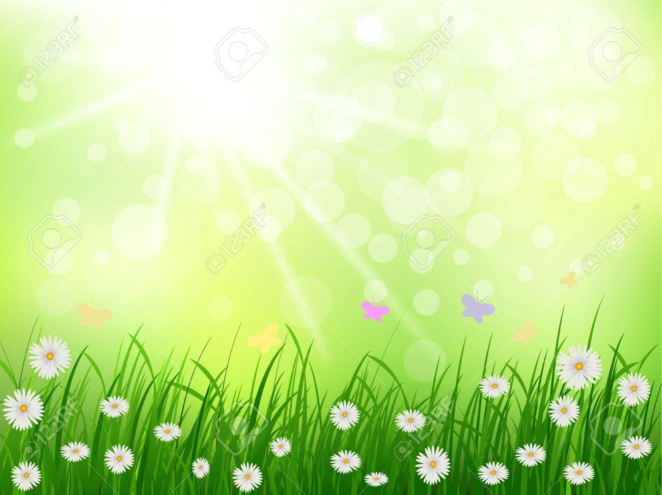 grass and flowers background. Plain Flowers Beauty Grass And Daisy Flower With Sunny Background Stock Vector  14791689 To Grass And Flowers Background N
