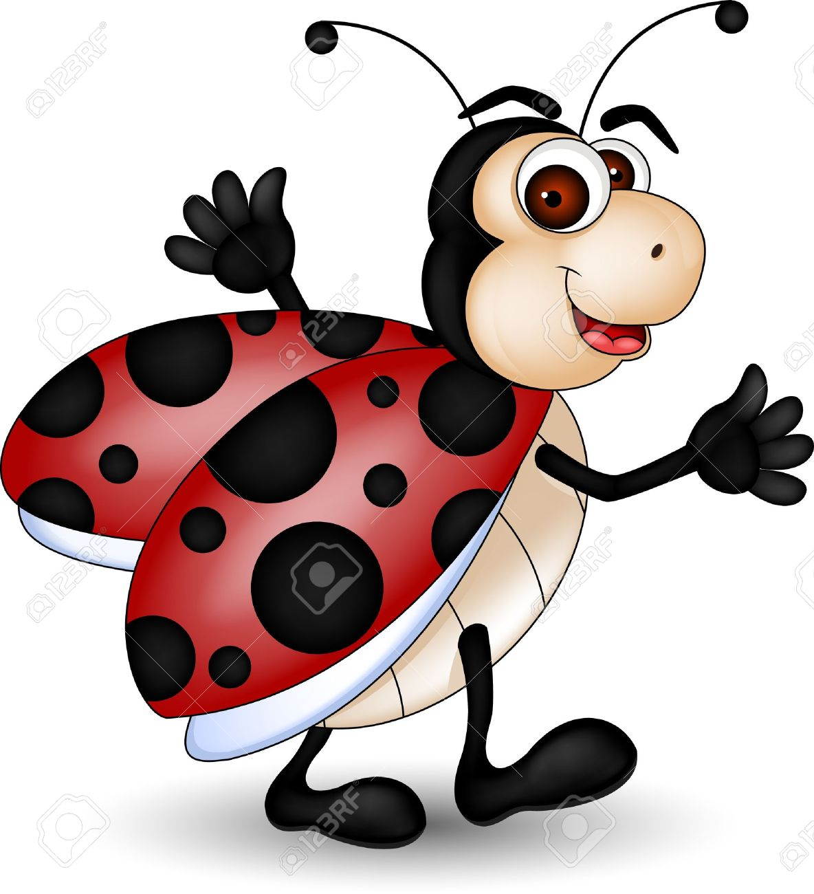 A Cartoon Ladybug funny ladybug cartoon