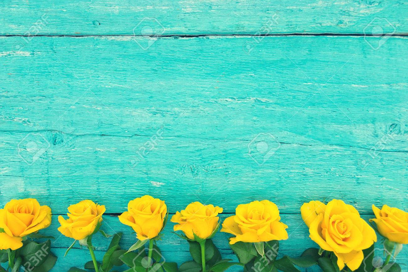 Frame Of Yellow Roses On Turquoise Rustic Wooden Background Valentines Day And Mothers