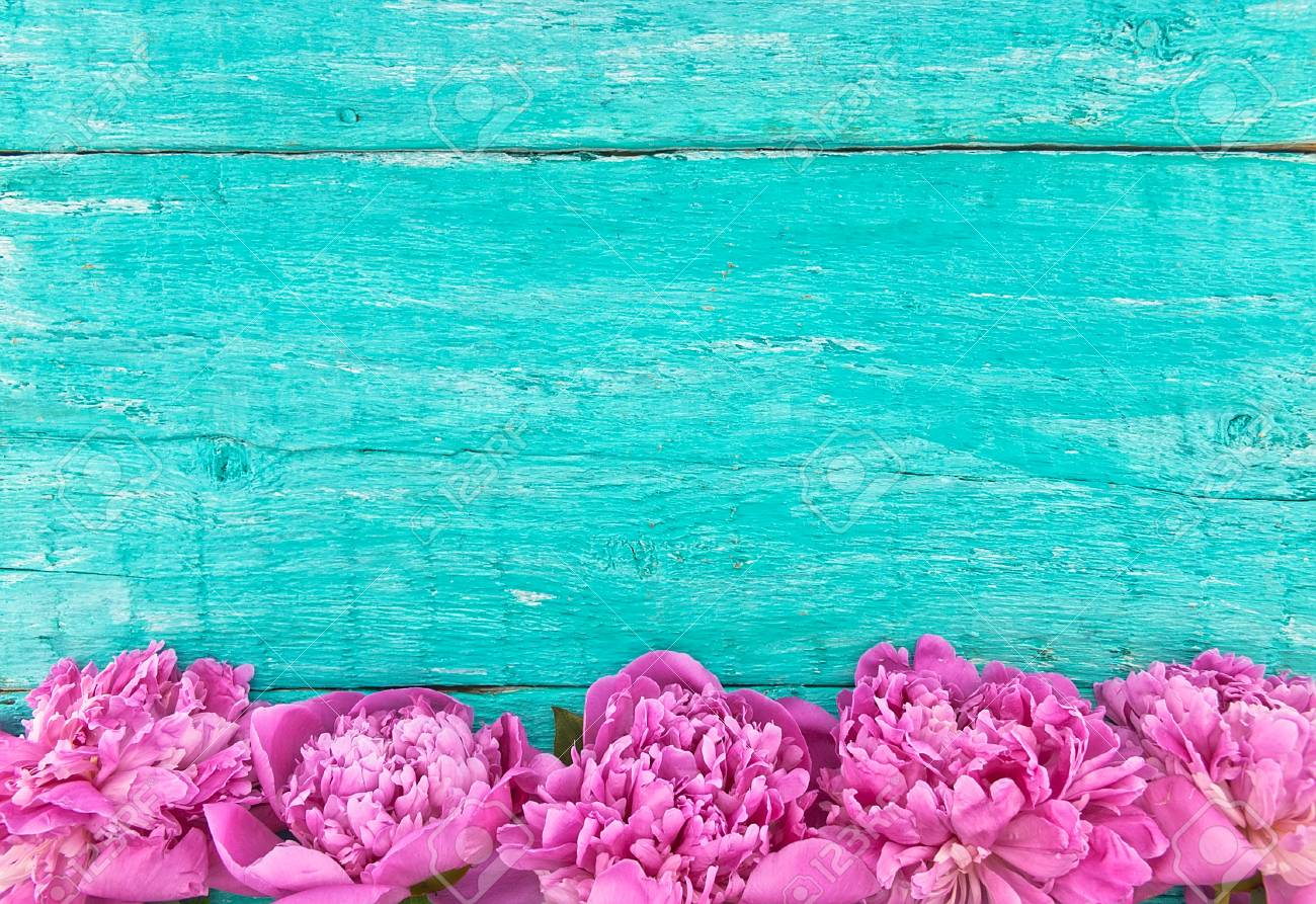 Frame Of Pink Peony Flowers On Turquoise Rustic Wooden Background With Empty Space For Greeting Message
