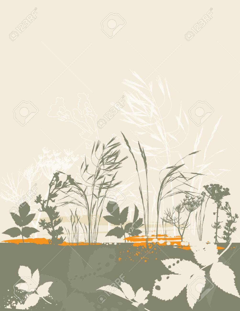 leaf, dill, crop, stem, corn, herb, green, curve, grass, shape, color, plant, stalk, flower, vector, fennel, orange, season, design, grunge, nature, natural, graphic, drawing, contour, clipart, scented, tracing, cartoon, abstract, separable, decoration, creativity, silhouette, composition, stylization, illustration Stock Vector - 1155967