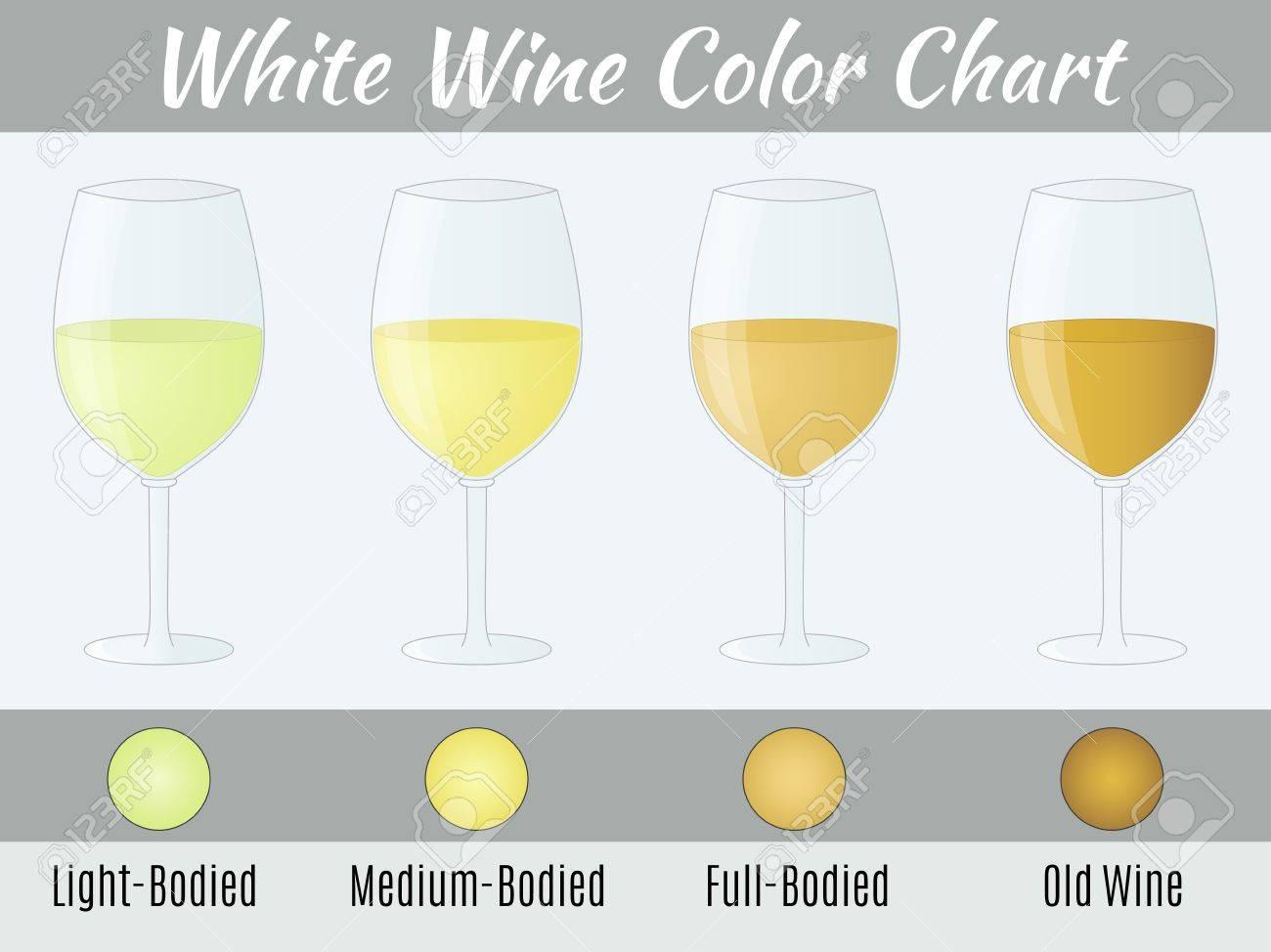 White wine color chart. Hand drawn wine glasses. - 61427888
