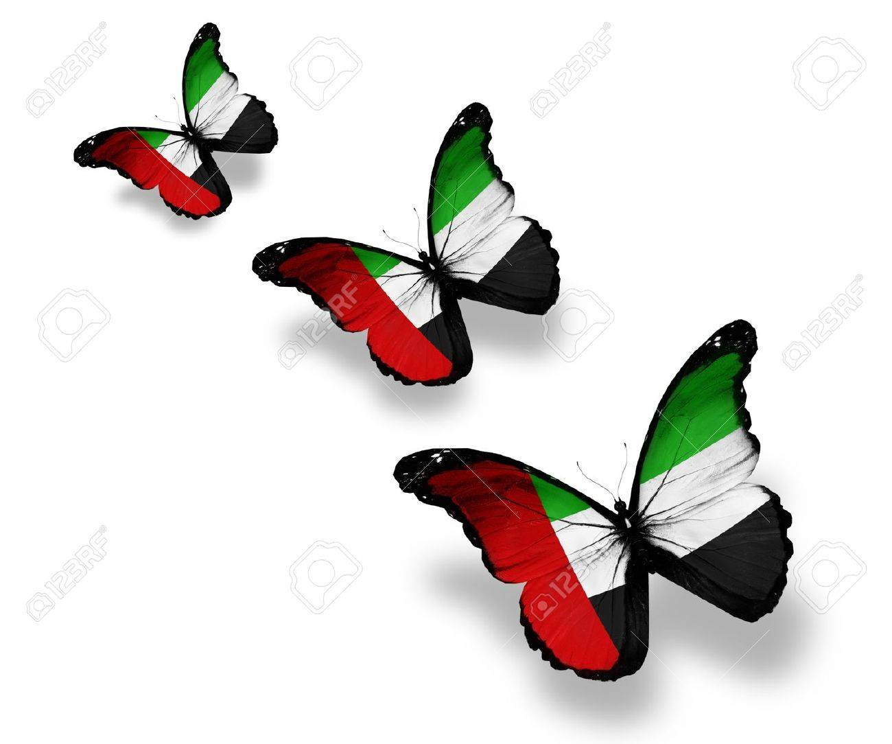 Uae flag stock photos royalty free business images three uae flag butterflies isolated on white biocorpaavc Images