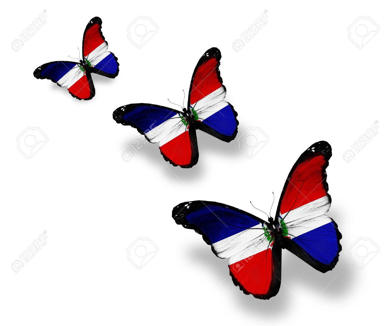 dominican republic flag images u0026 stock pictures royalty free