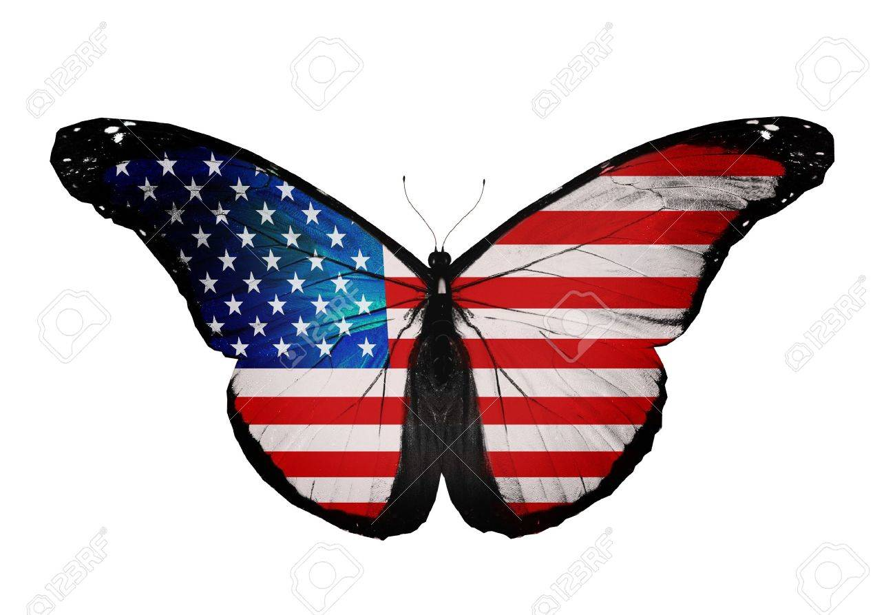 008fdc77cda American Flag Butterfly Flying