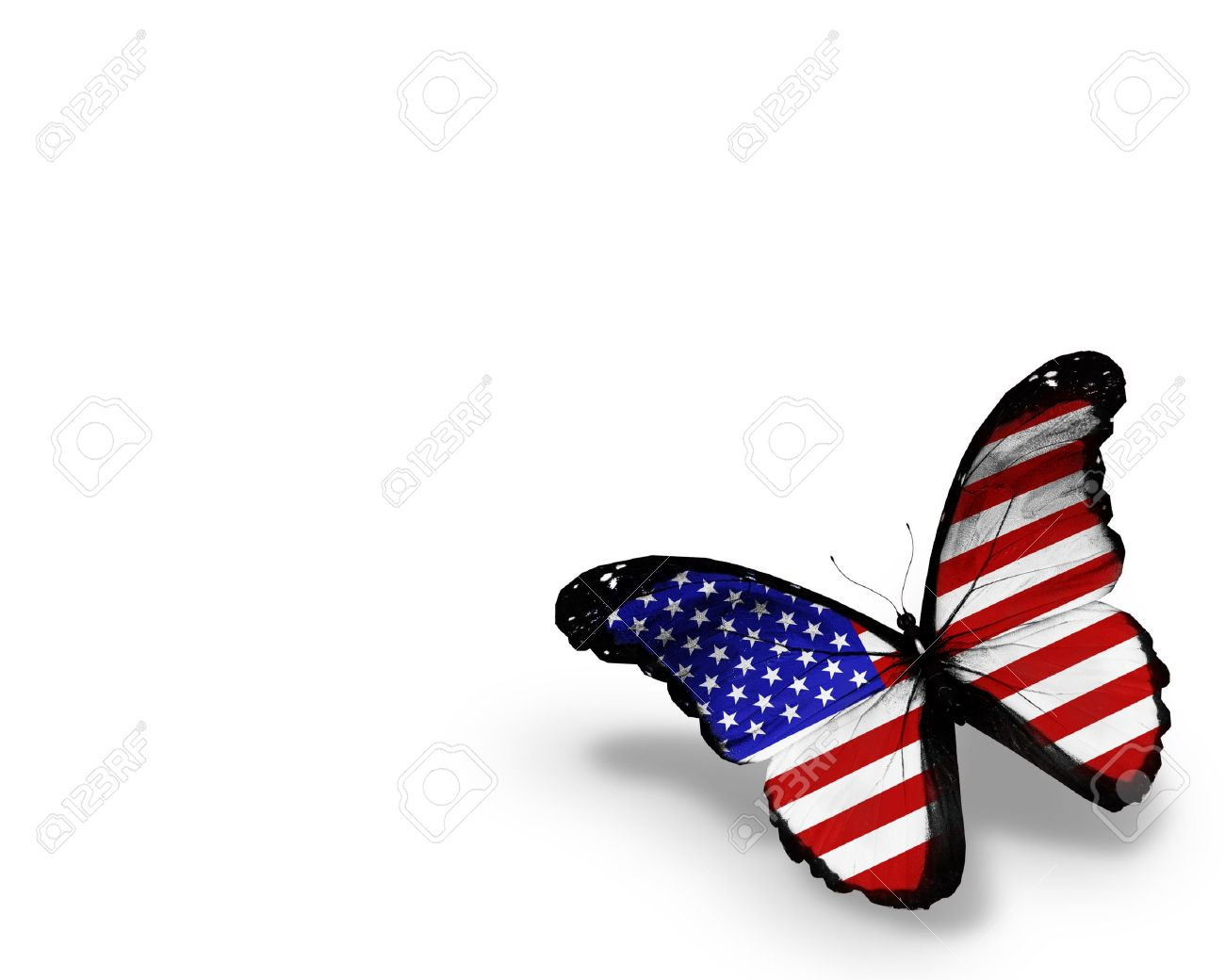 304c29f6dad American Flag Butterfly