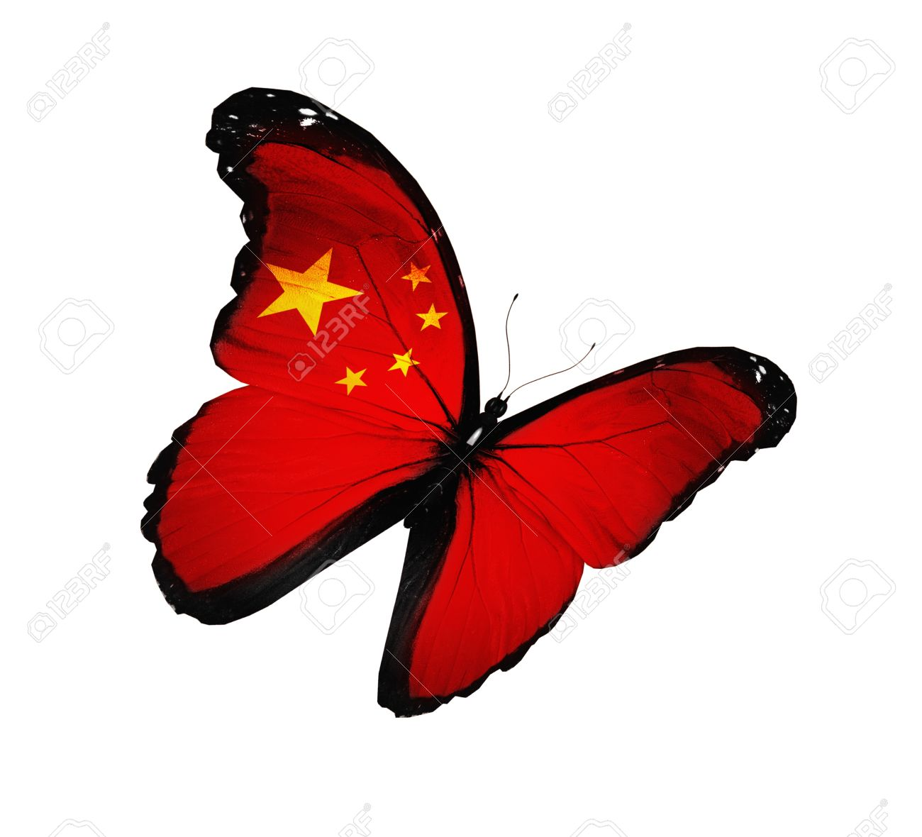 0e11cea0594 Chinese Flag Butterfly Flying