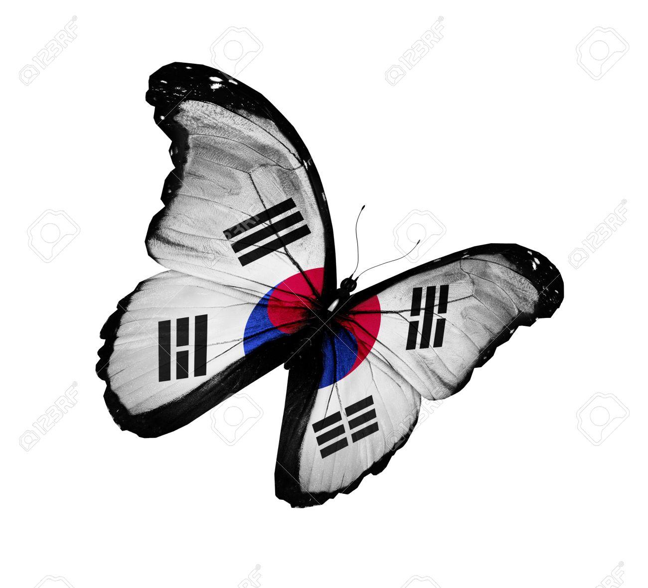 0a2b6c9735e South Korea Flag Butterfly Flying