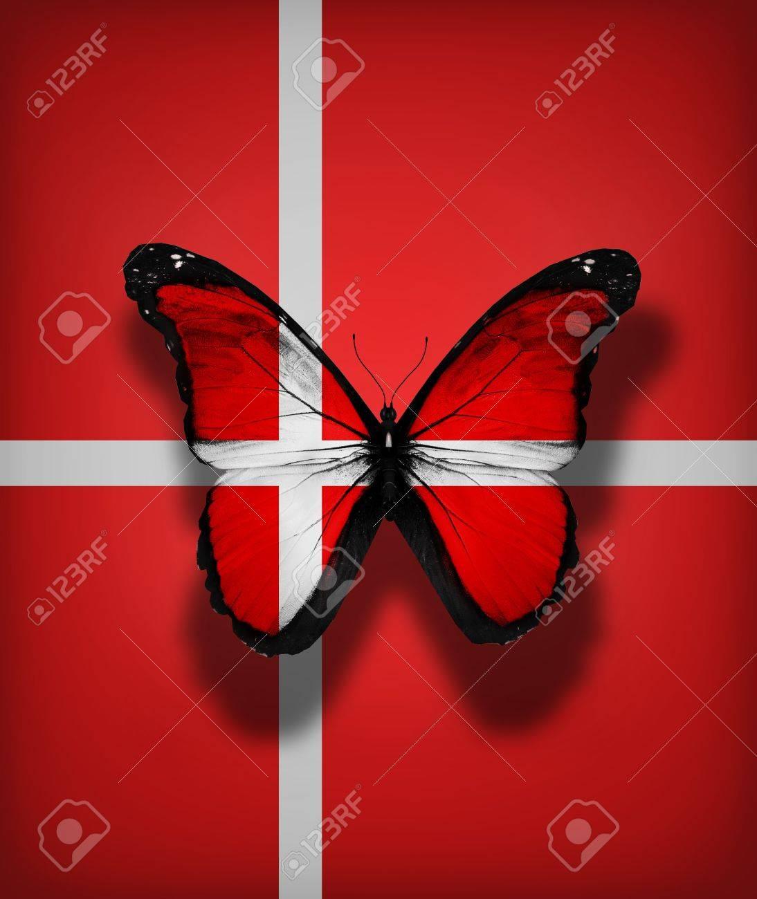 denmark flag butterfly isolated on flag background stock photo