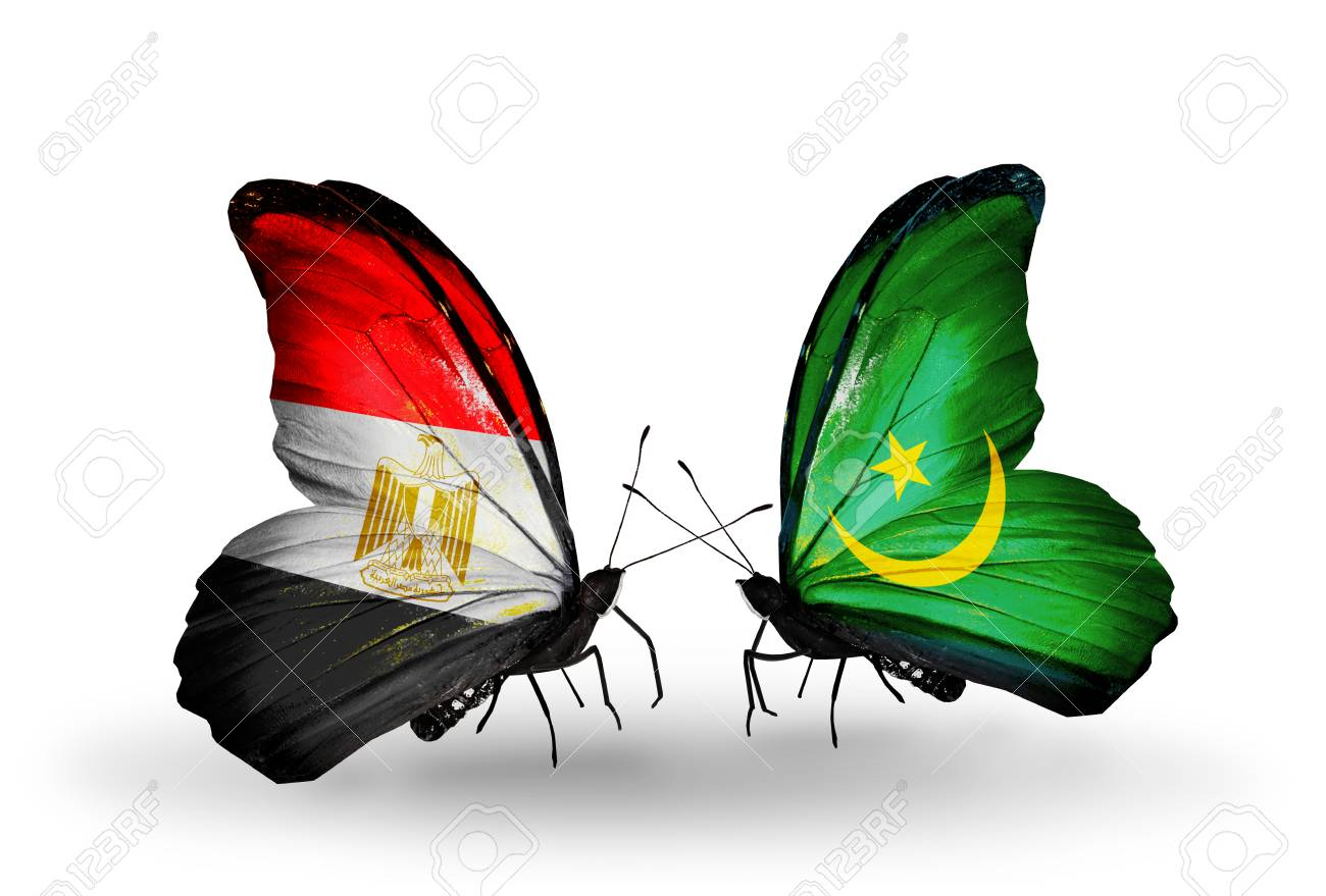 Two Butterflies With Flags On Wings As Symbol Of Relations Egypt