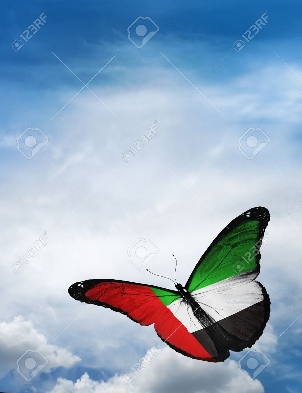 UAE flag butterfly flying on sky background - 33614644