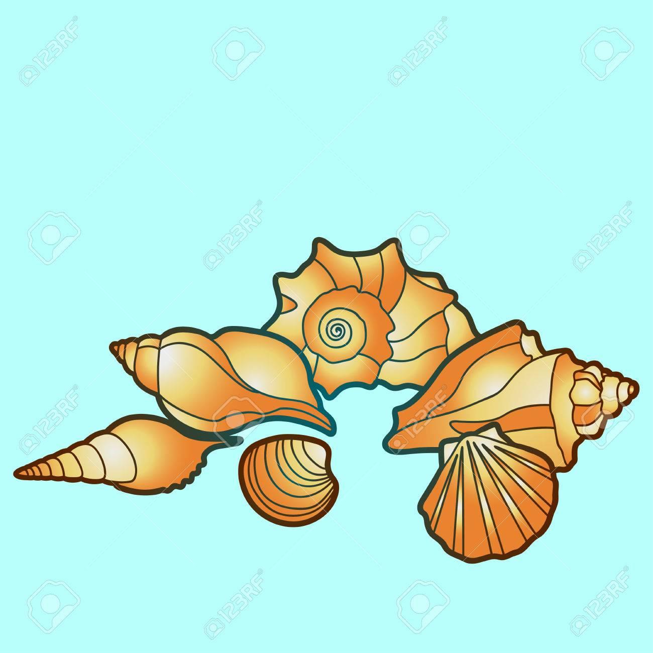 sea shells, Illustraion with scallop, conch and mollusk - 55735186