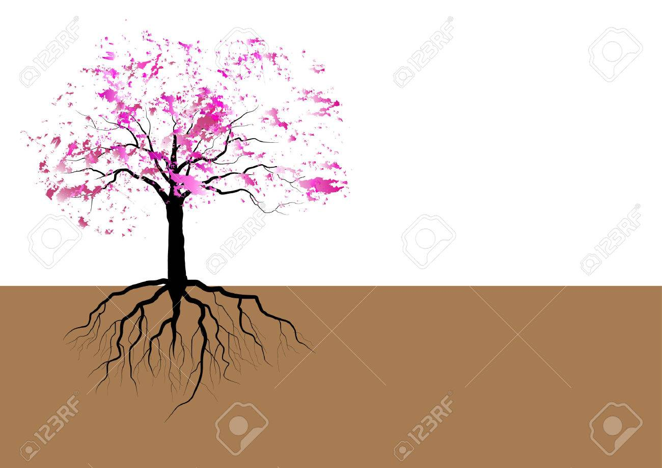 Cherry Blossom Tree With Roots Pink Watercolor Design Vector Royalty Free Cliparts Vectors And Stock Illustration Image 48101750