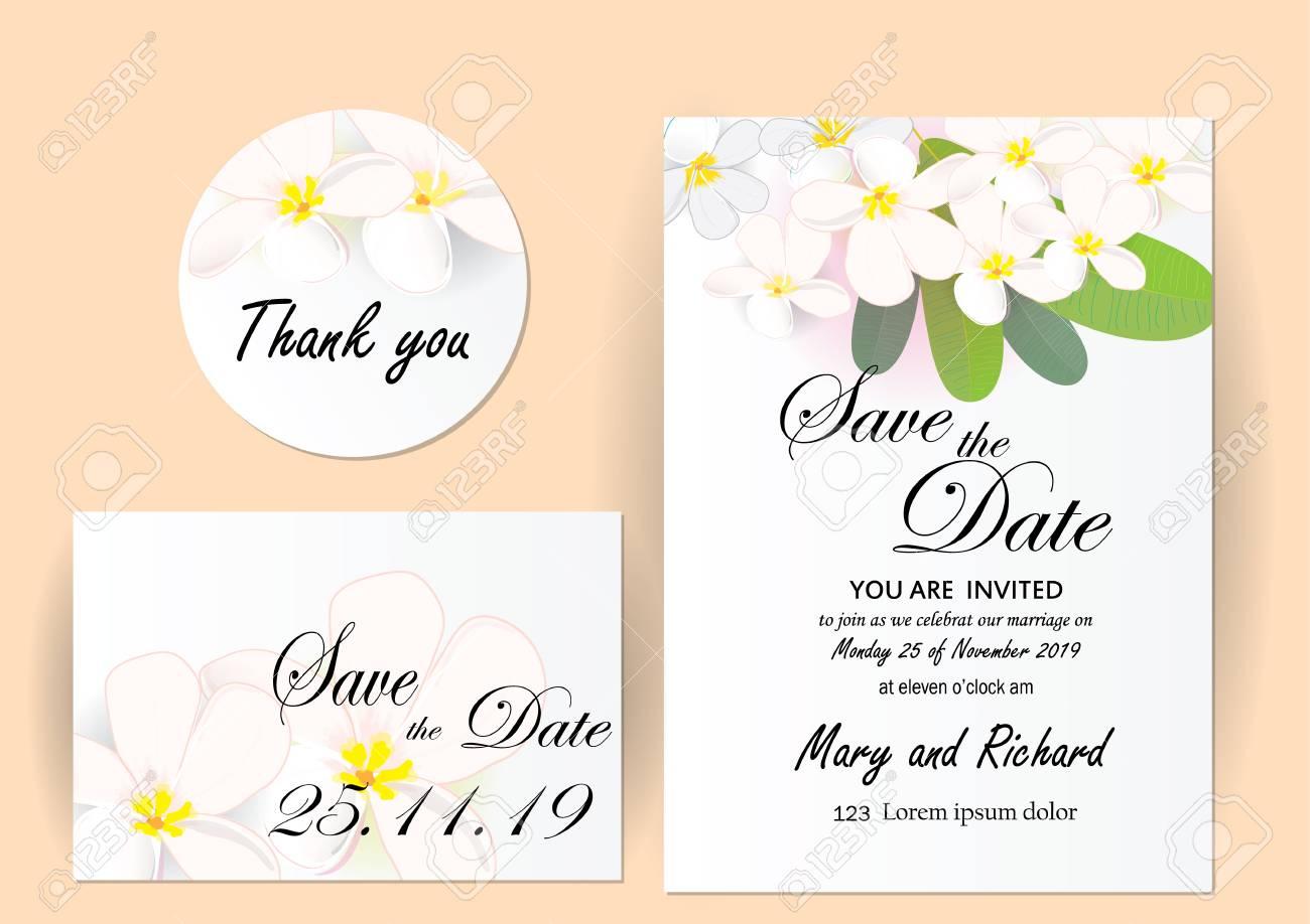 Wedding Invitation Card Set Plumeria Flowers With Leaves On White ...