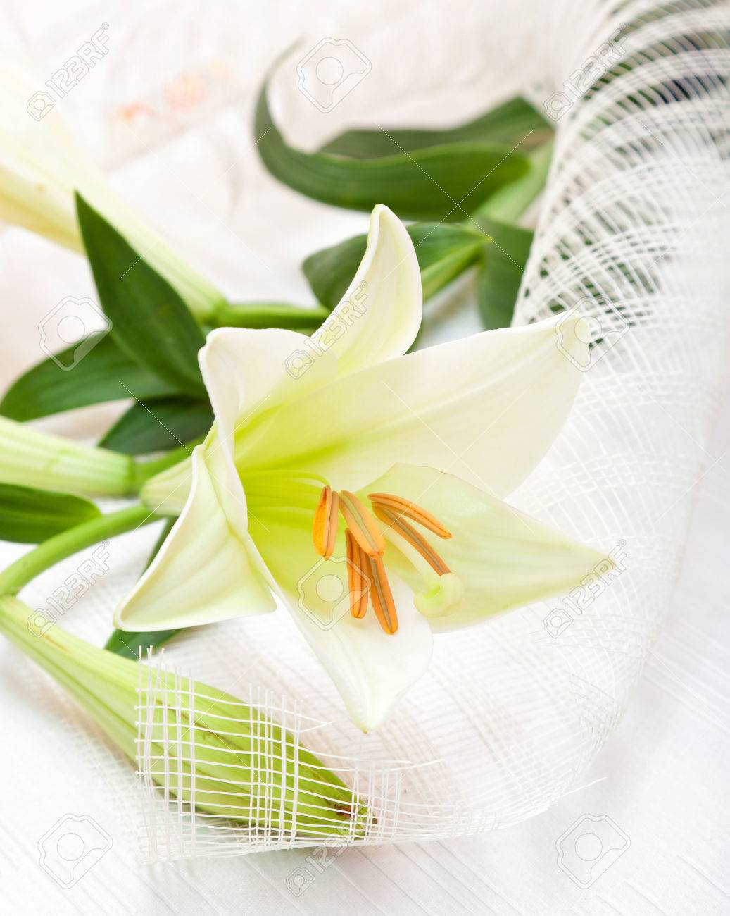beautiful white easter lily flower bouquet religious symbol