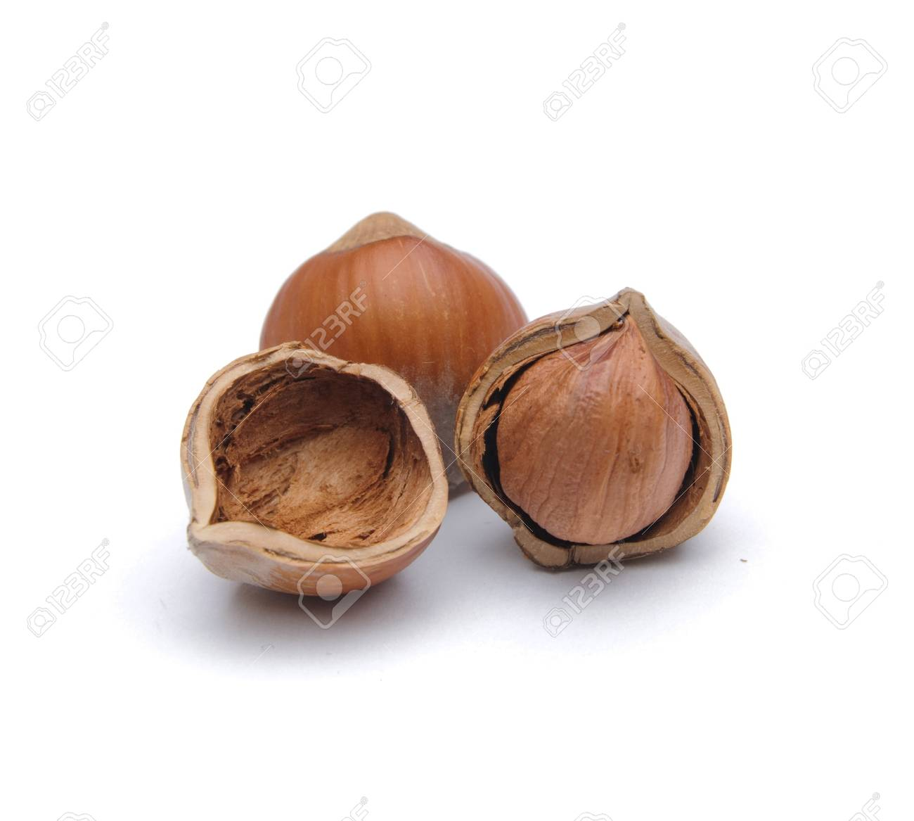 Isolated  hazelnuts Stock Photo - 4465293