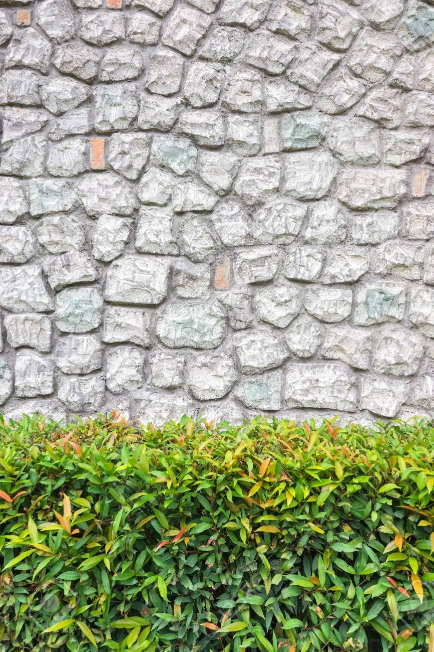 mauerwerk wände in einem schönen garten, steinmauer in rasen und