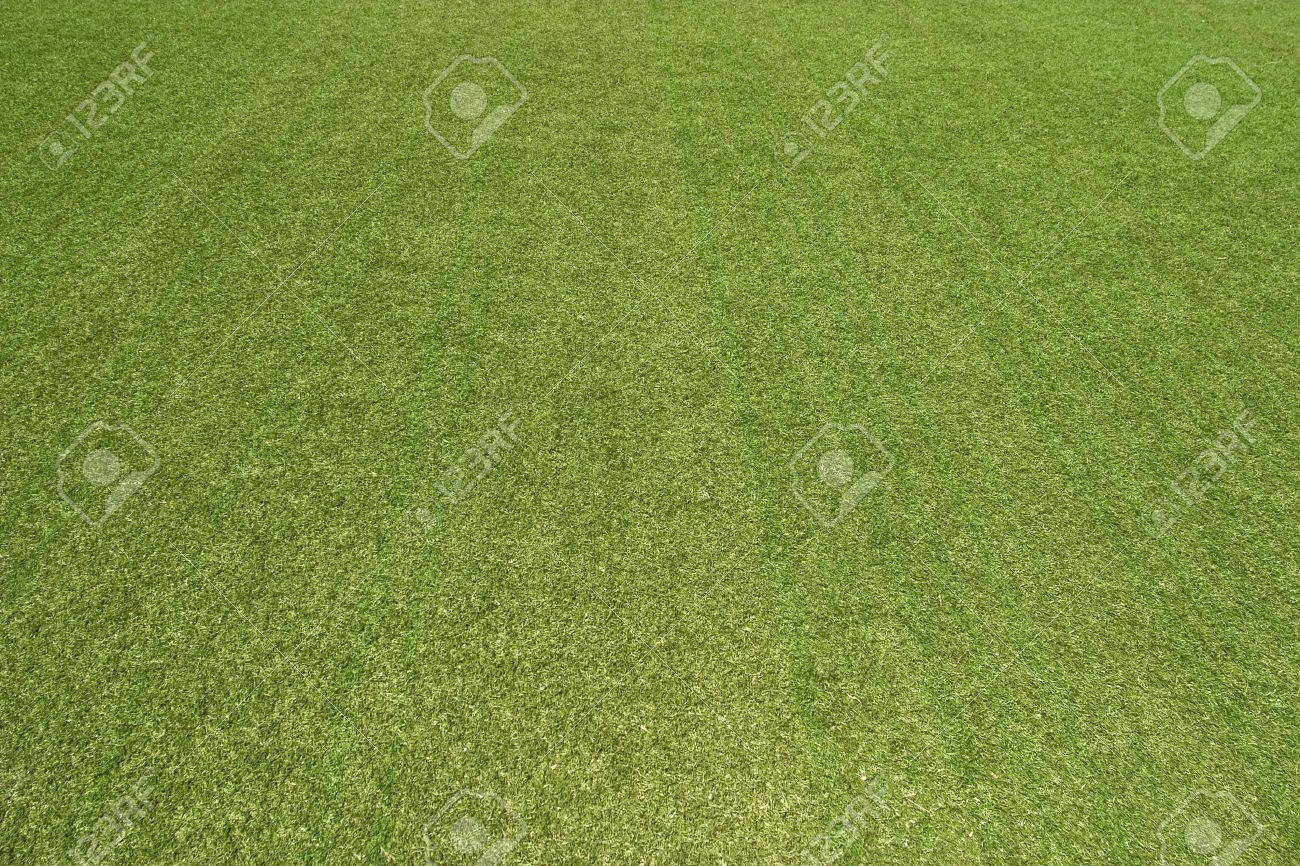 The texture of the herb cover sports field. It is used in baseball, football, cricket, rugby, tennis, golf, field hockey Stock Photo - 7554152