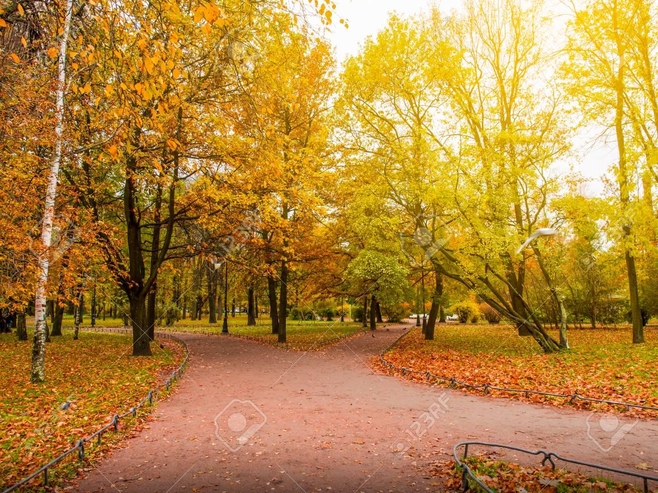 foto de Beau Parc D'automne Avec Chemin à Pied, Automne En St.petersburg ...