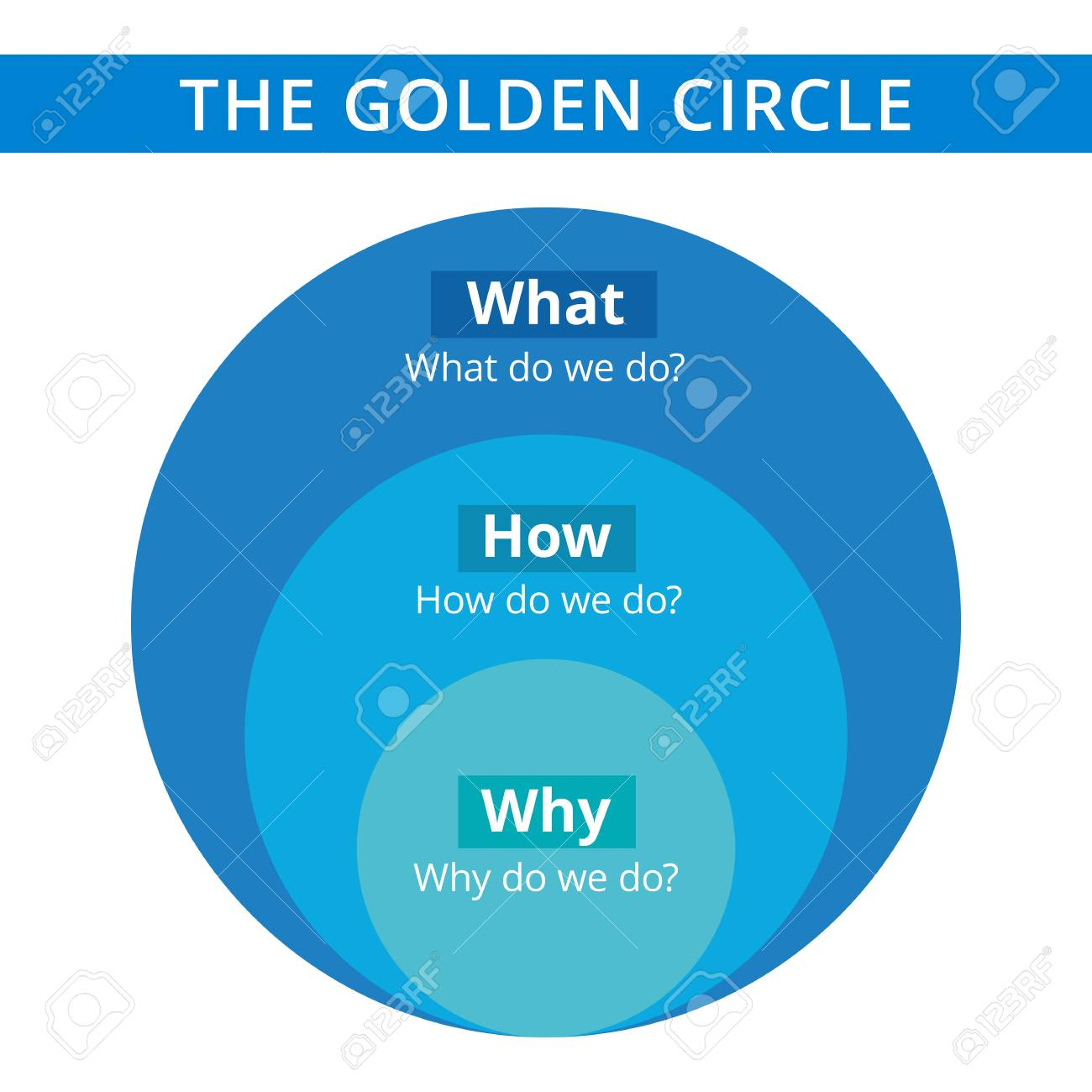 Editable infographic template of Golden circle diagram, blue and light blue version - 51163886