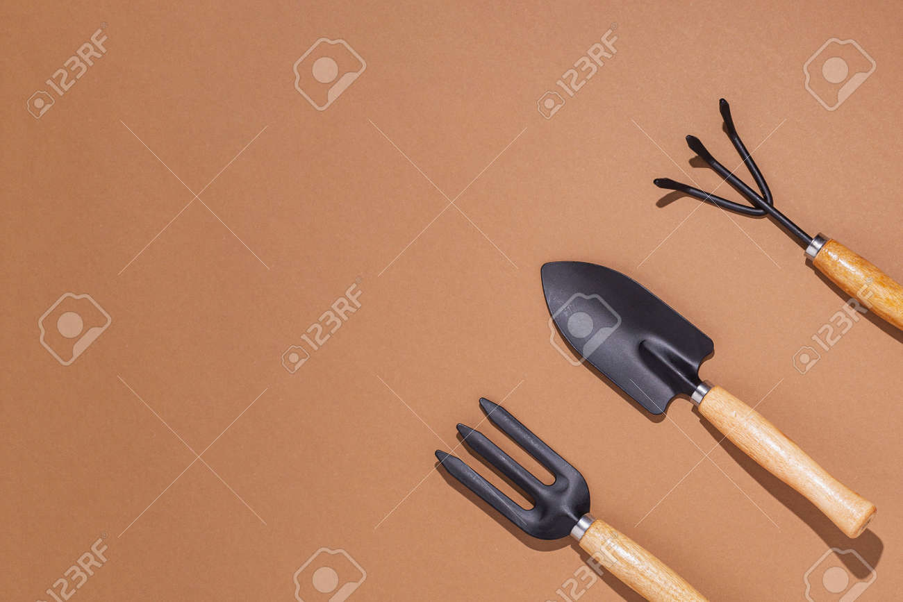 Gardening tools on a brown background. Top view, flat lay. - 171847668