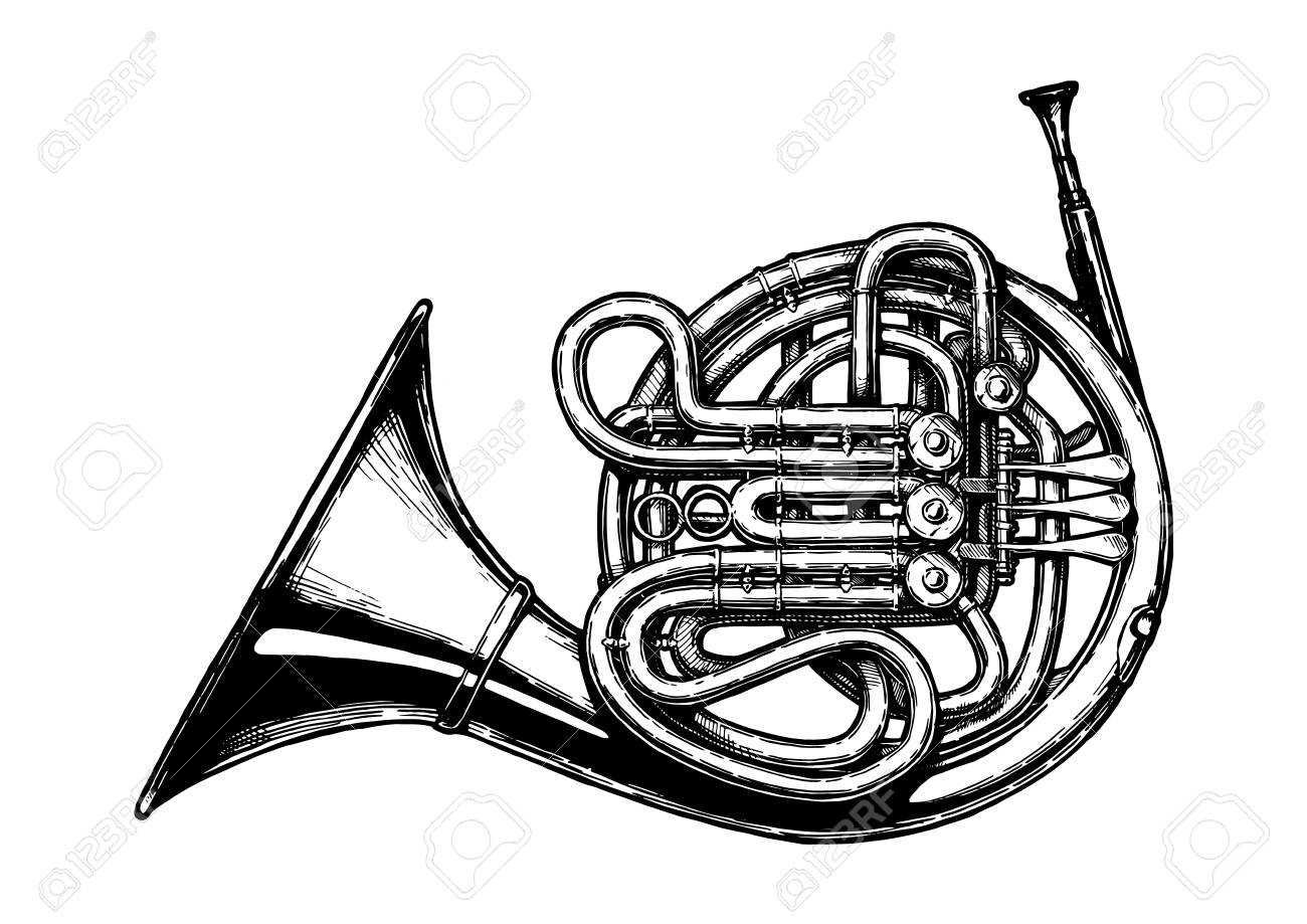 Vector hand drawn illustration of French horn in vintage engraved style. Isolated on white background. - 107722319