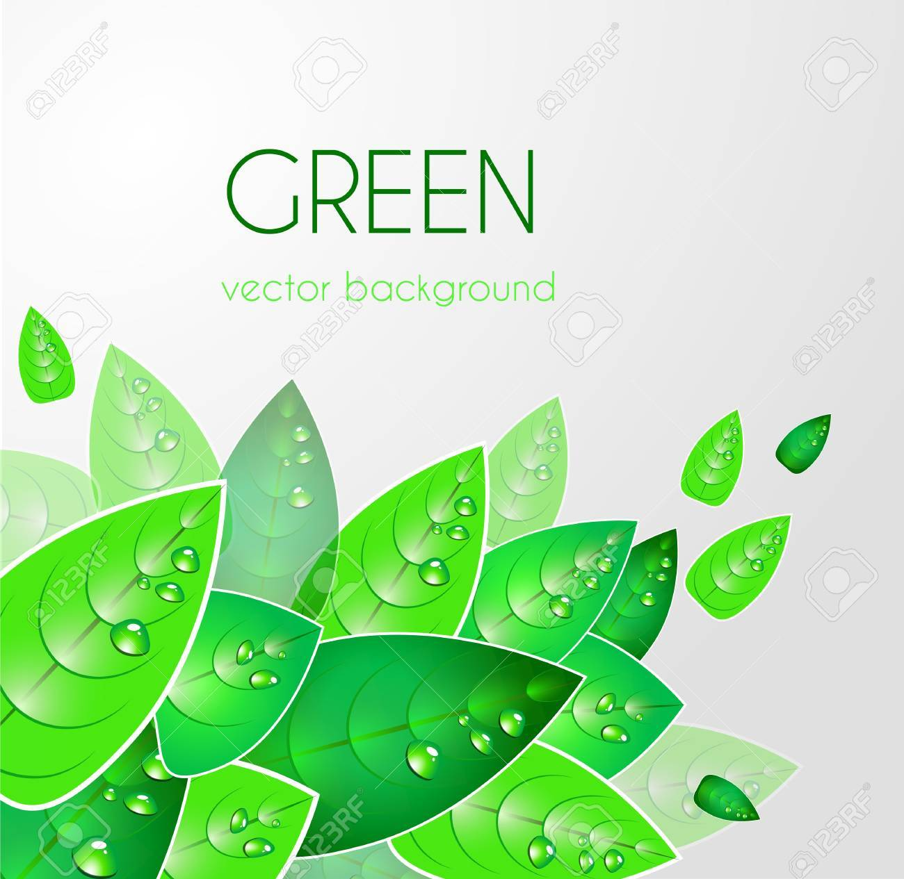 Abstract light vector  background with green leafs Stock Vector - 10002989
