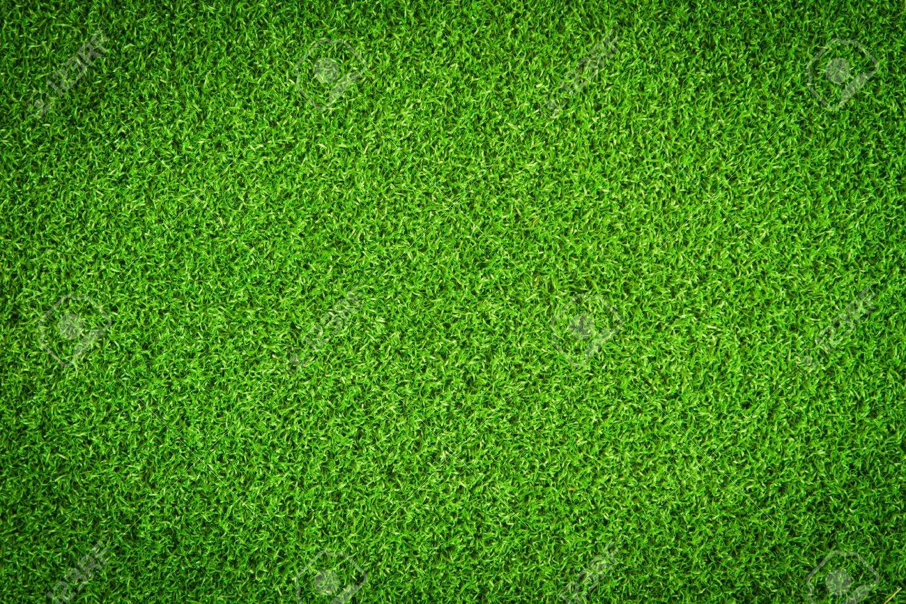 Artificial Grass Field - 9398047