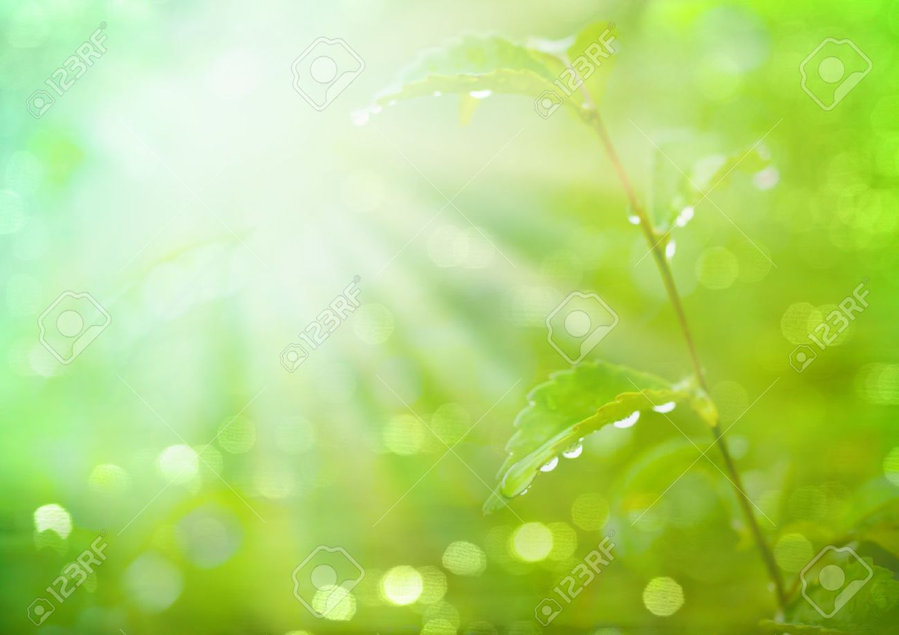 Abstract blur spring blackground in Manual Mode with Bokeh Stock Photo - 10849442