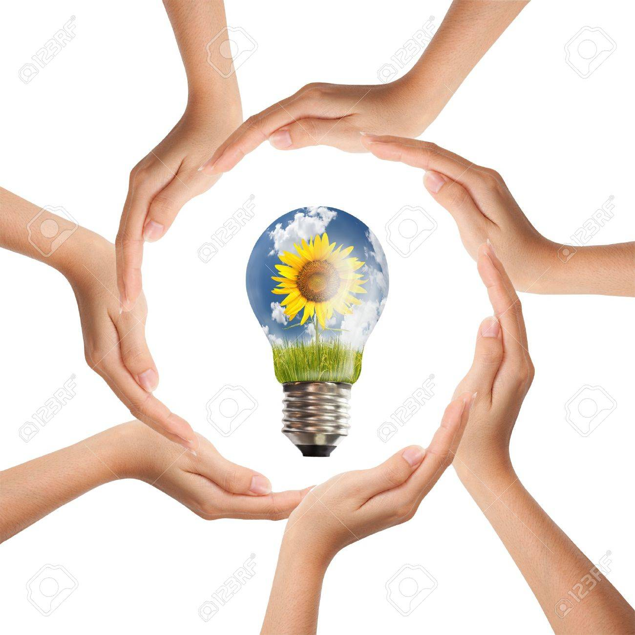Multiracial human hands making a circle with Copy Space Stock Photo - 11098596
