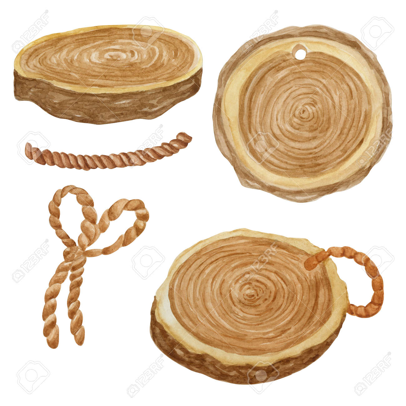 Wooden cut collection watercolor illustration. Wood coaster set isolated on white background. - 156489658