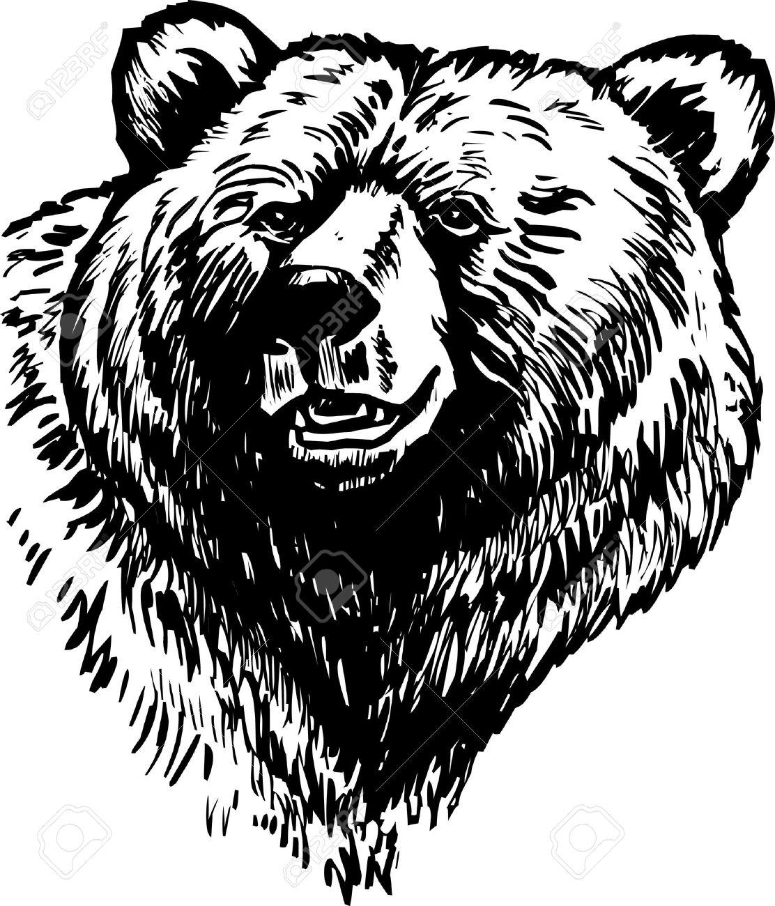 Grizzly Brown Bear Vector Stock Vector - 6122300