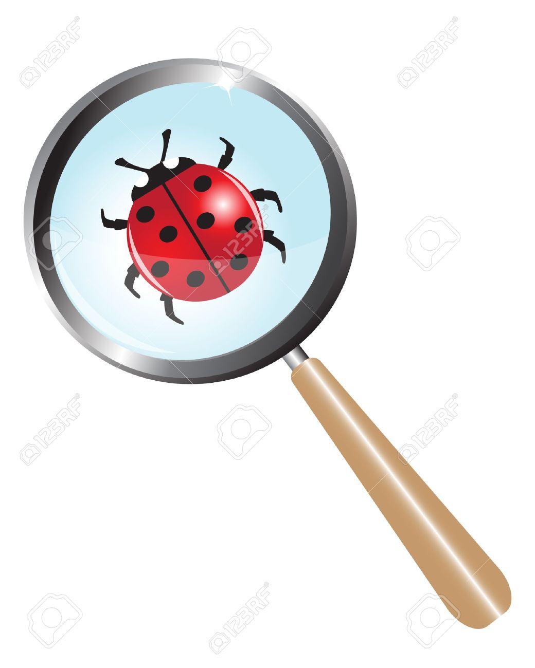 ladybug under a magnifying glass - 15516087