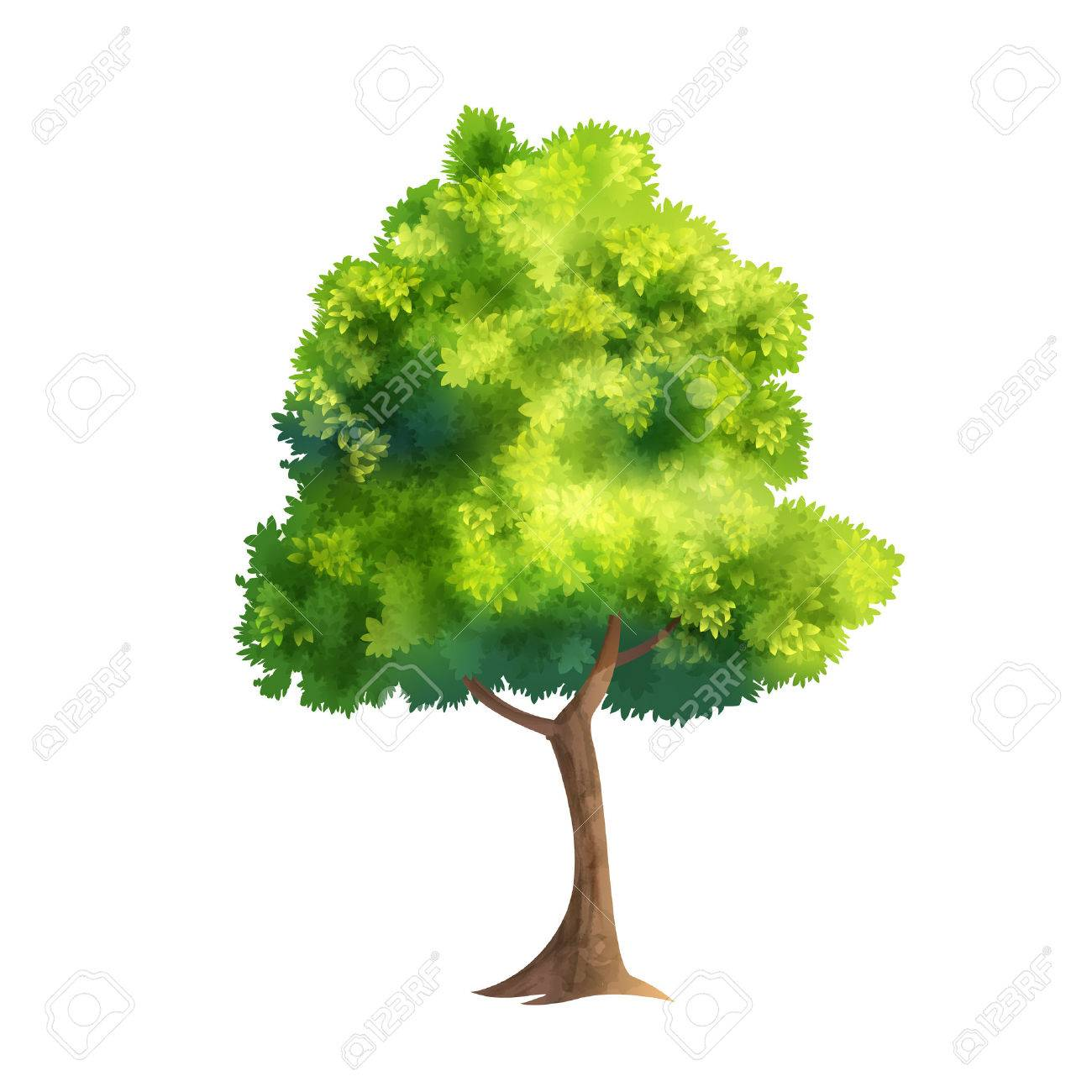 Color Vector Illustration Of Big Tree With Fresh Leaves Isolated On White - 61706363