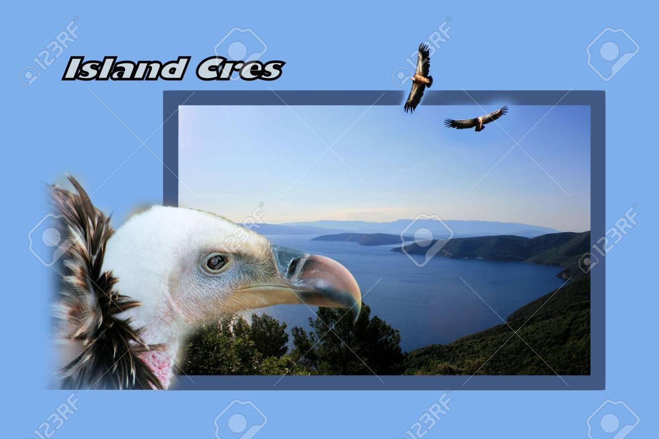 Design For Carte Postale, De L'île De Cres, Croatie, Avec Le Texte