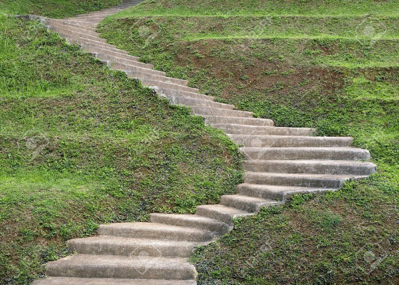 Béton en escalier vers la colline de jardin