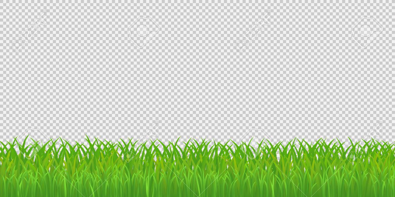 green grass border isolated on transparent background vector royalty free cliparts vectors and stock illustration image 97153364 green grass border isolated on transparent background vector