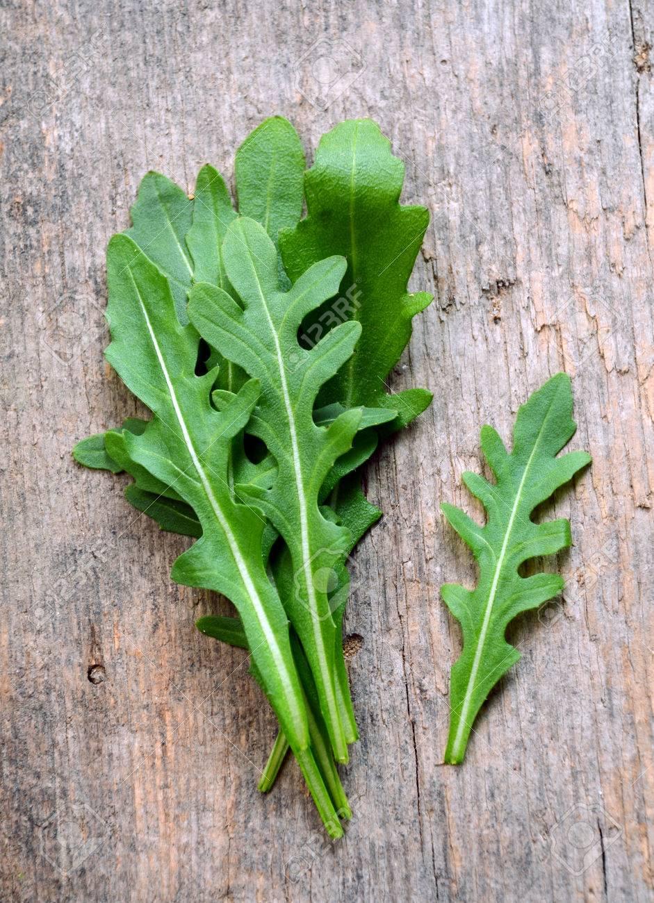 Fresh Arugula Salad Rocket Roquette Rucola Leaves Stock Photo 41258582