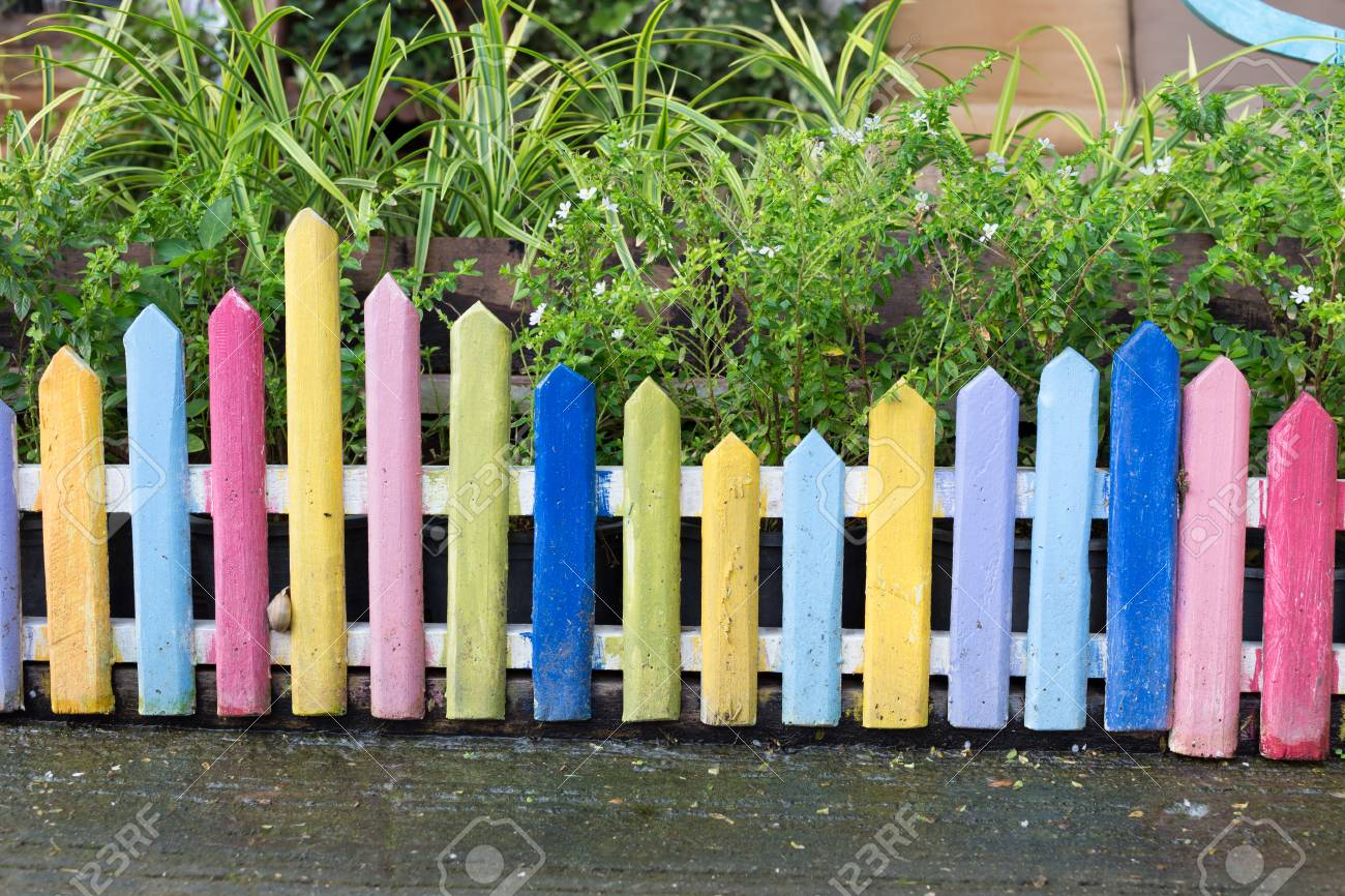 Colourful Wood Fence In Small Garden With White Flower Stock Photo