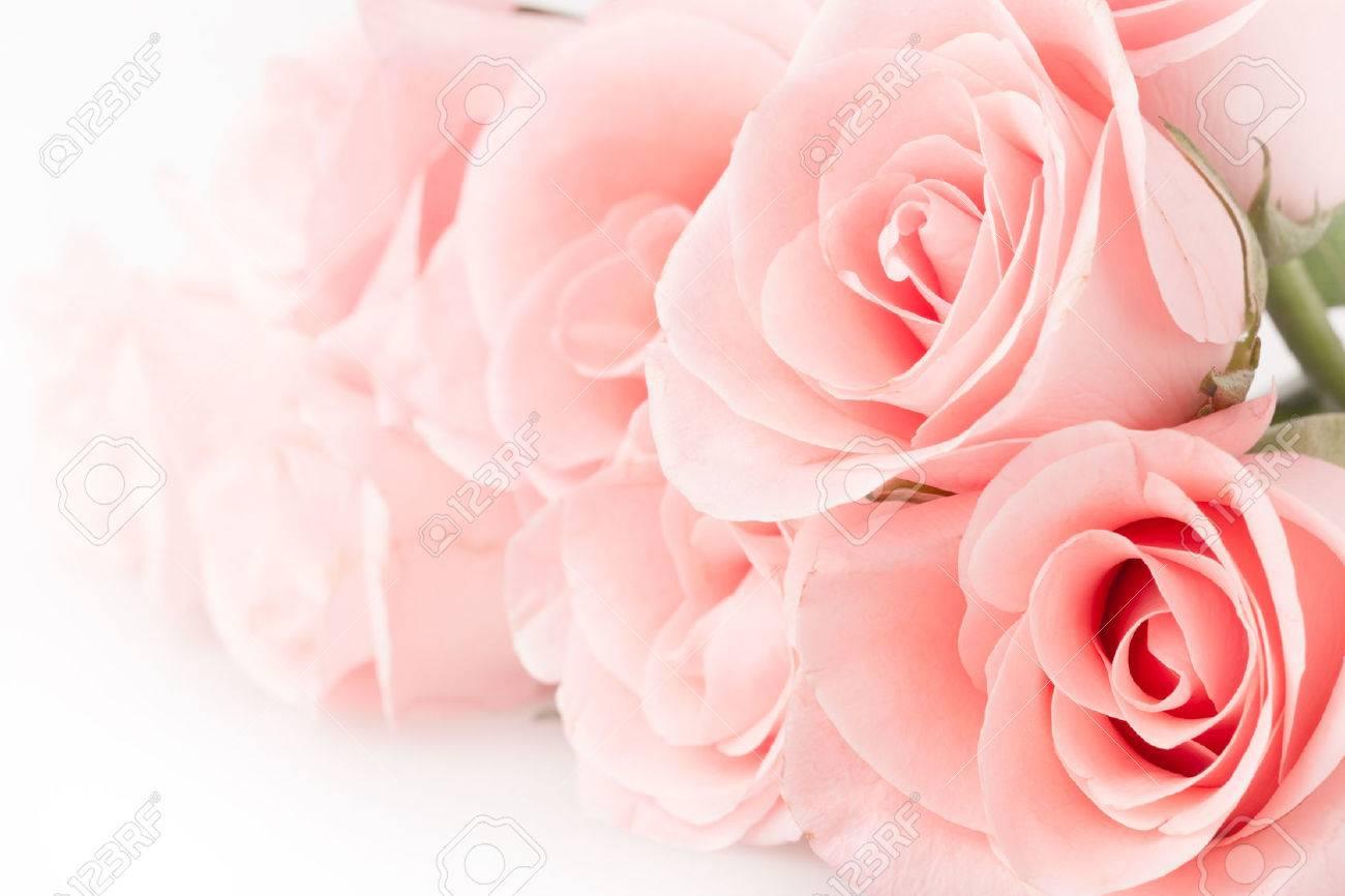 rose flower bouquet vintage background - 35695234
