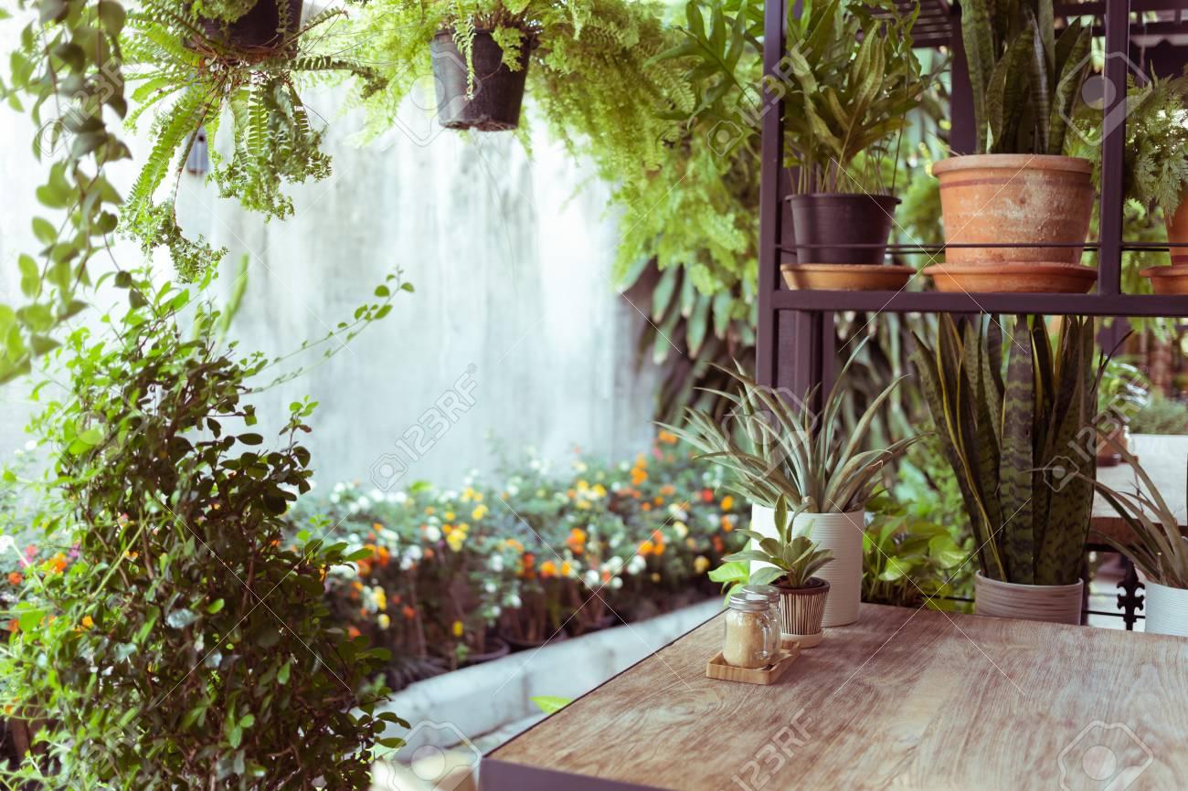 Superieur Banque Du0027images   Décoration Salon Style Intérieur éco Environnement Vert  Avec Arbre Nad Plante