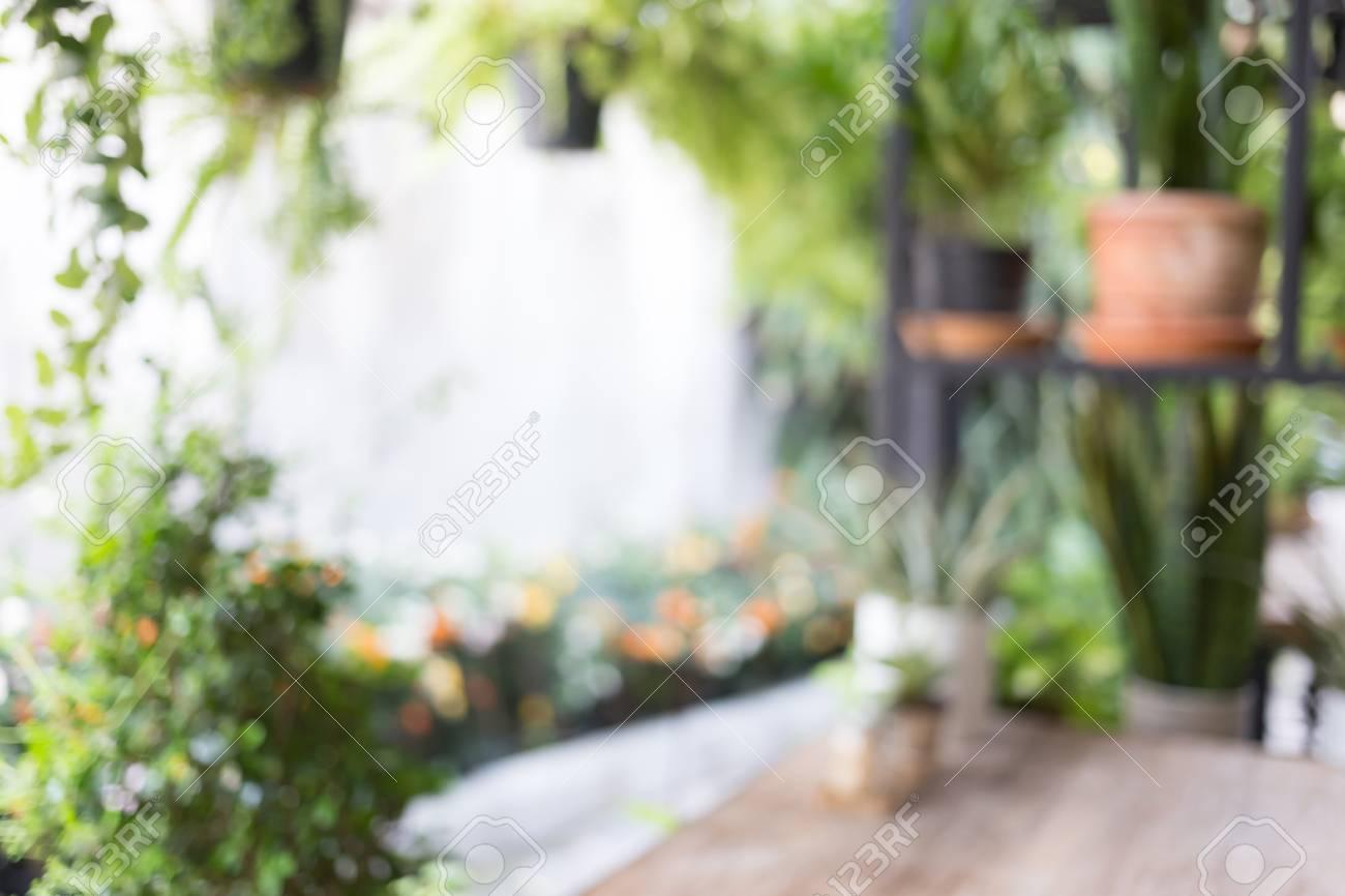 De Haute Qualite Banque Du0027images   Image Floue Résumé, Décoration Salon Style Intérieur Vert  éco Environnement Avec Arbre Nad Plante
