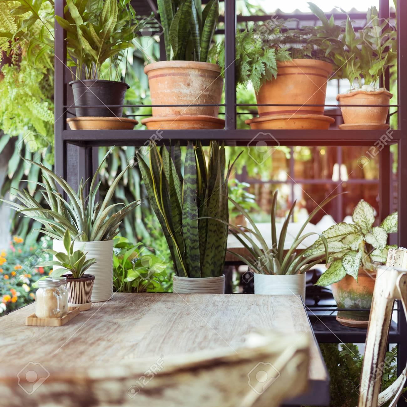 Dekoration Wohnzimmer Interieur Stil Grün Öko Umwelt Mit Pflanze Und ...
