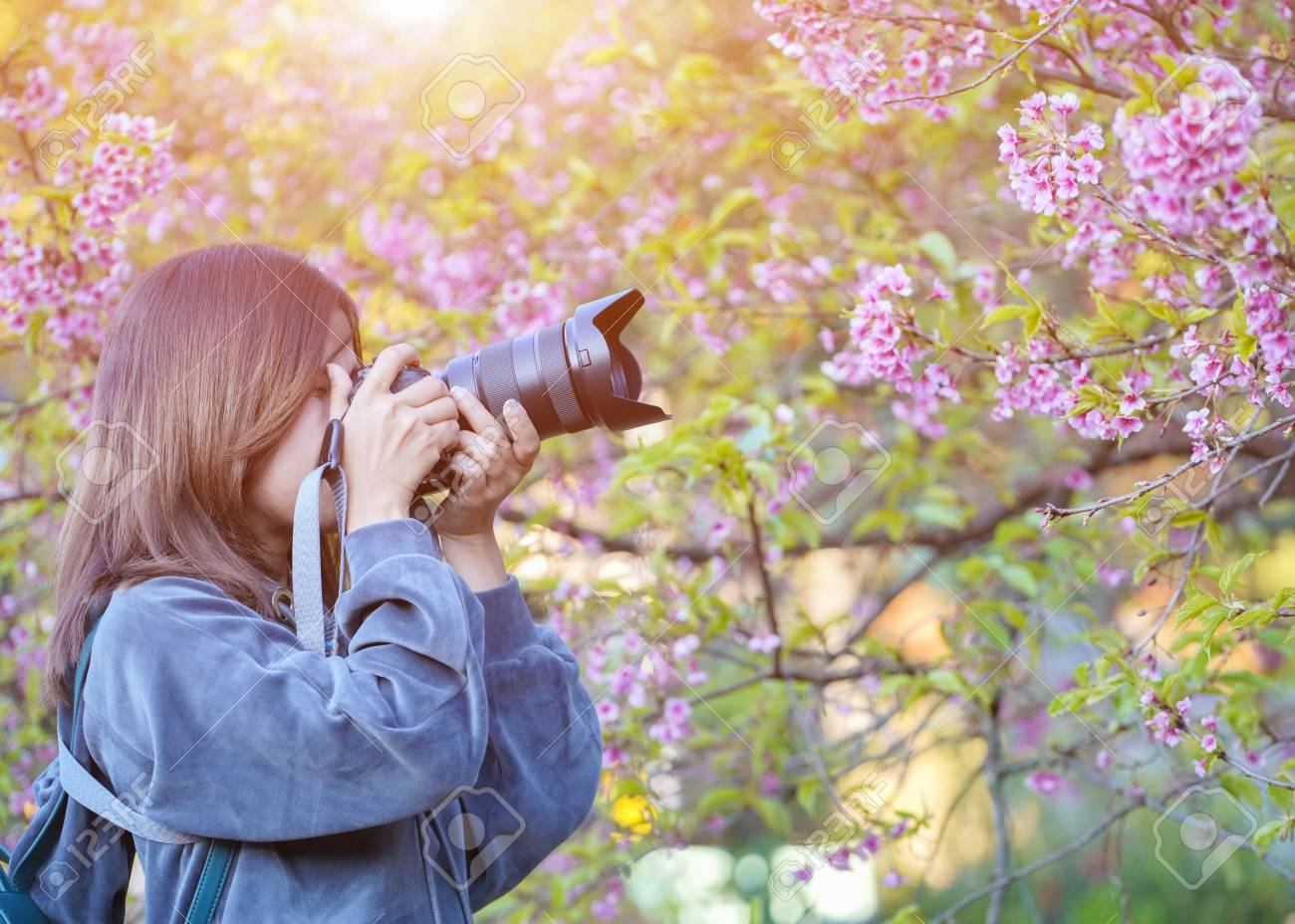 Happy woman traveler take photos by camera with cherry blossoms tree on vacation while spring, Selective focus - 104430257