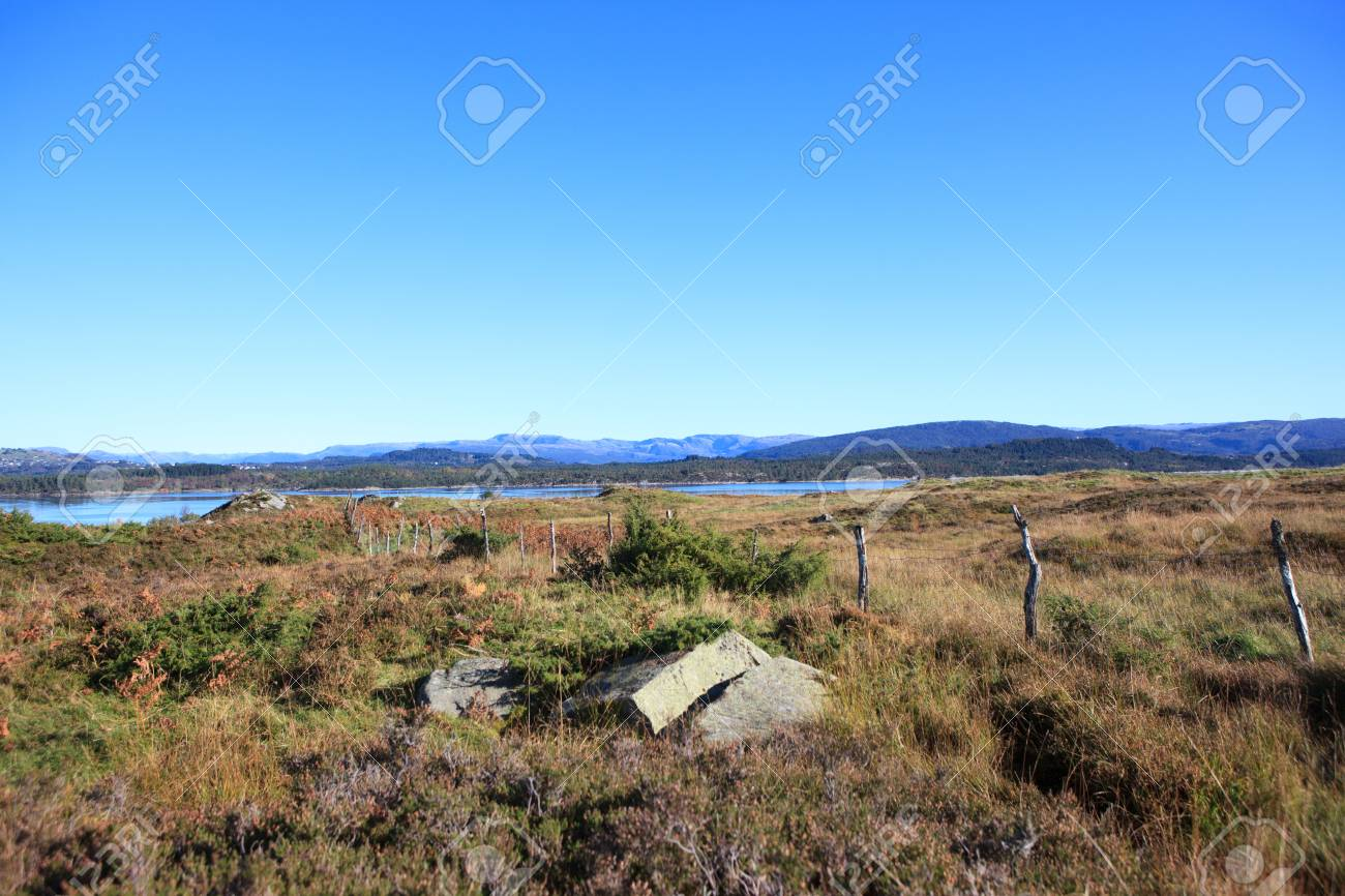 A beautiful autumn landscape west in Norway. - 81421710