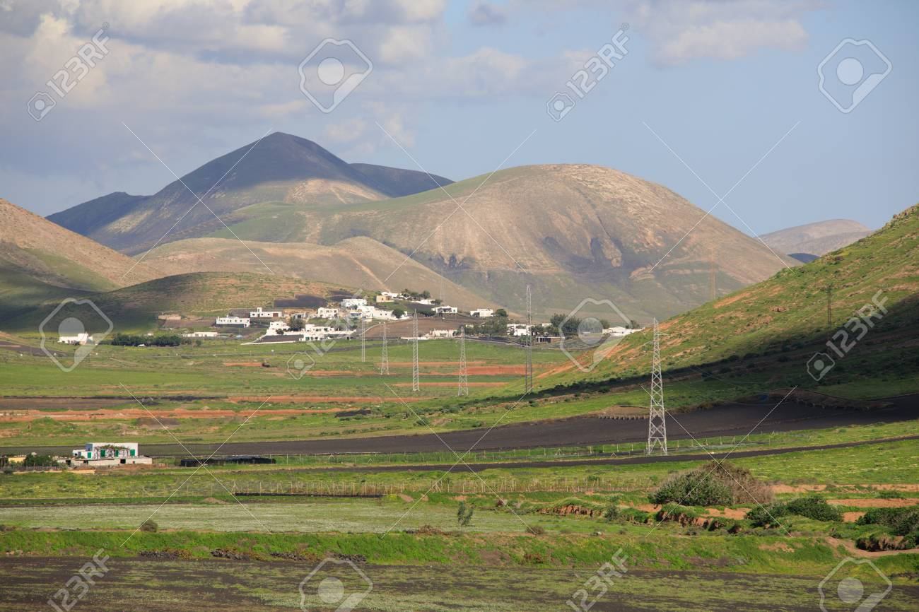 Volcanic, but green landscape on Lanzarote. - 81421714