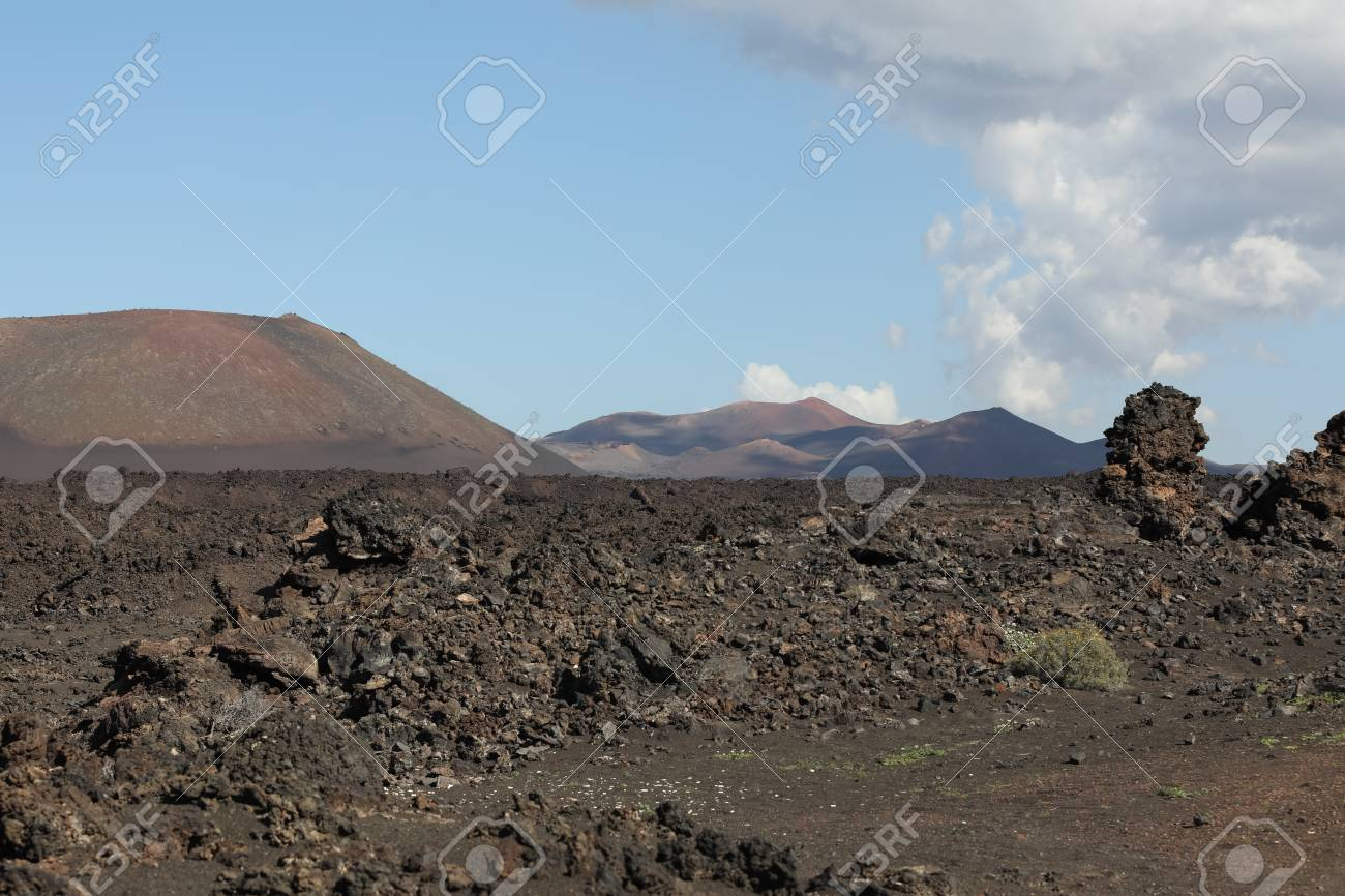 Volcanic, but green landscape on Lanzarote. - 81404440