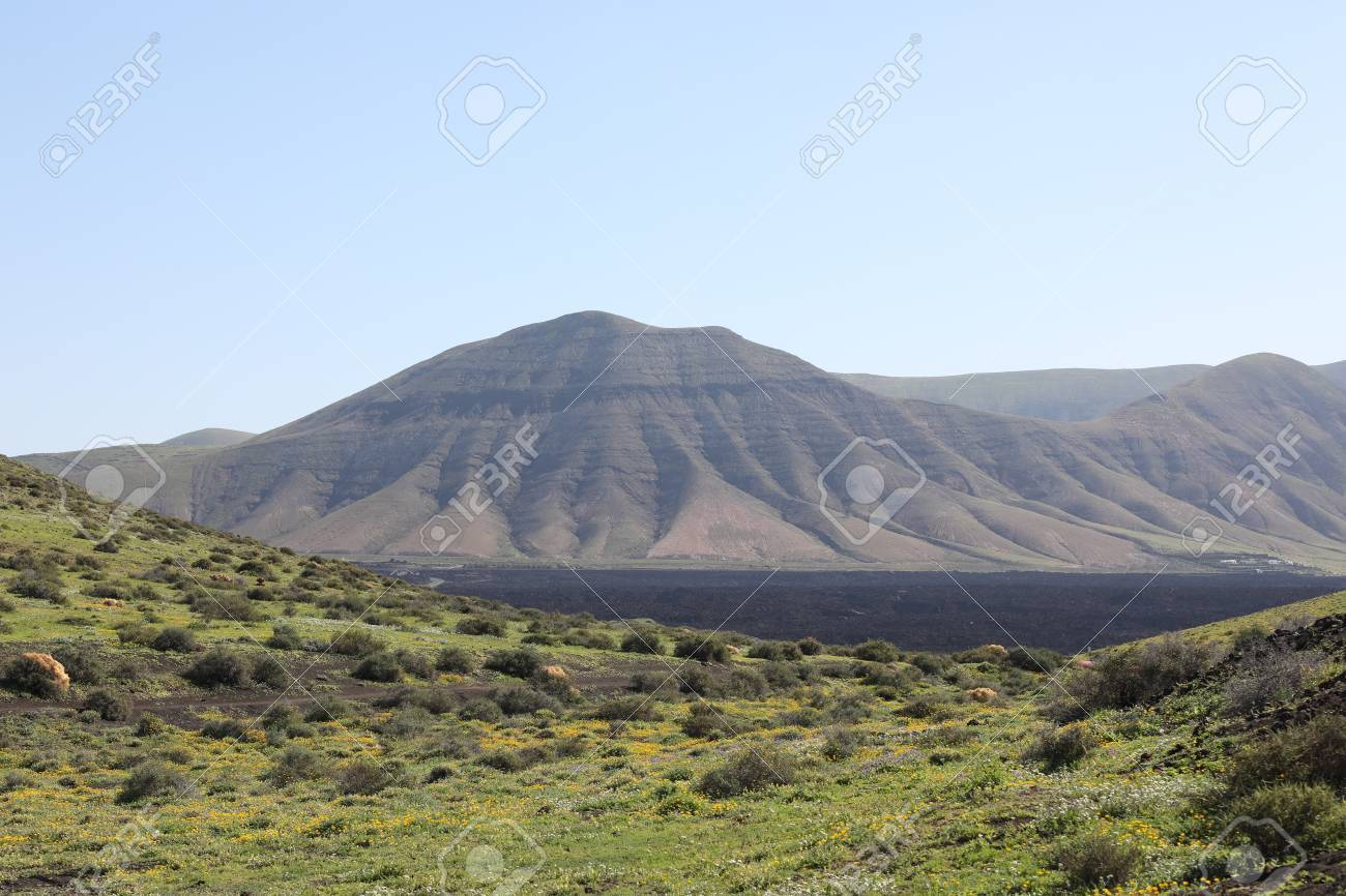 Volcanic, but green landscape on Lanzarote. - 81404374